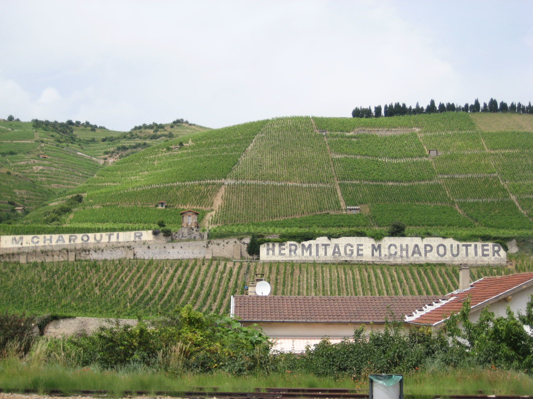 Chapoutier Vineyards in Hermitage